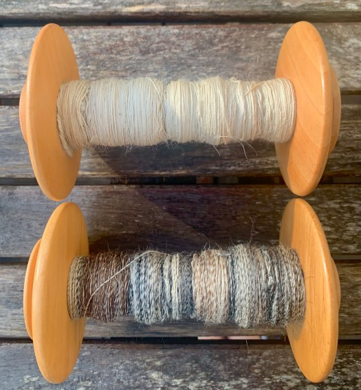 Two bobbins of singles. One pure white and one with a mix of brown, white and grey.