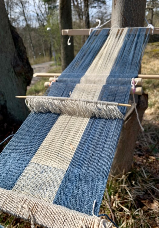 A Backstrap Loom outdoors. The project is a wide balance weave in three sections – the edges in blue and the middle in white.