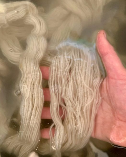 The strands in the right skein are still free to move while the strands in the left skein have started to catch on to each other.