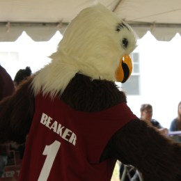 "Say ""Hi"" to Beaker, Eastern's eagle mascot! He flew down to greet guests during homecoming."
