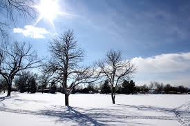 Even though it seems hard to spend time outside during the winter, any source of sunlight can benefit us in the long run.