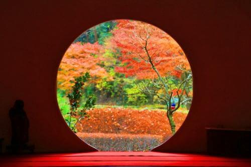 明月院 悟りの窓 2