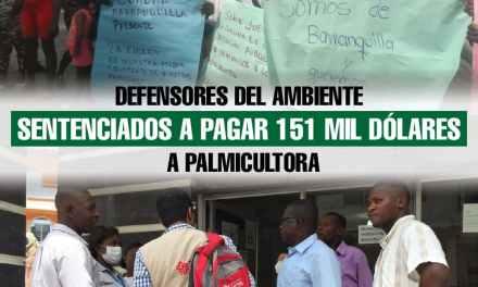 Defensores del ambiente sentenciados a pagar 151 mil dólares a palmicultora