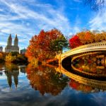 156 1568500 Fall Foliage In Central Park New York City, WAM Partners