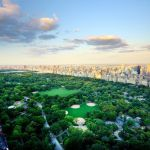 83 838072 Central Park High Resolution, WAM Partners