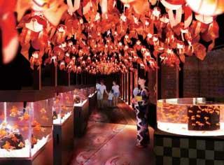 お江戸の金魚ワンダーランド