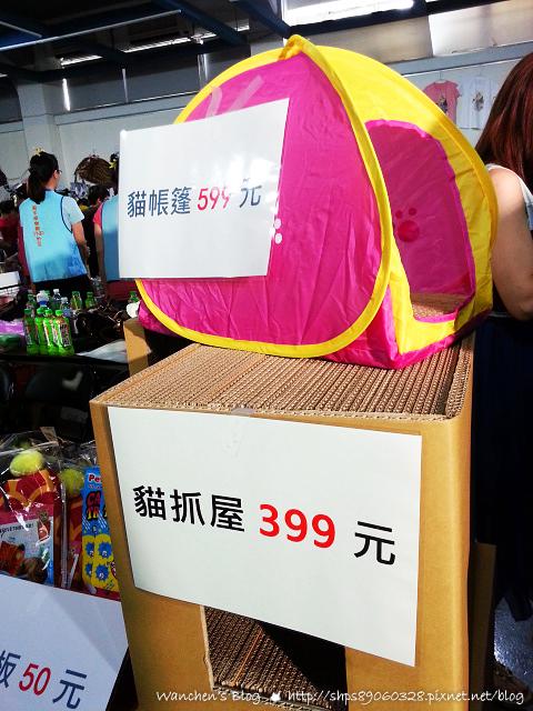 20140614華山貓咪送養_104609