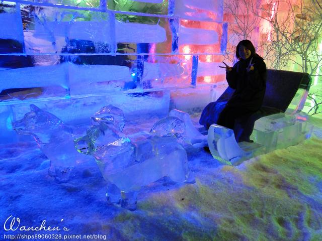 DSC 2014急凍樂園06523