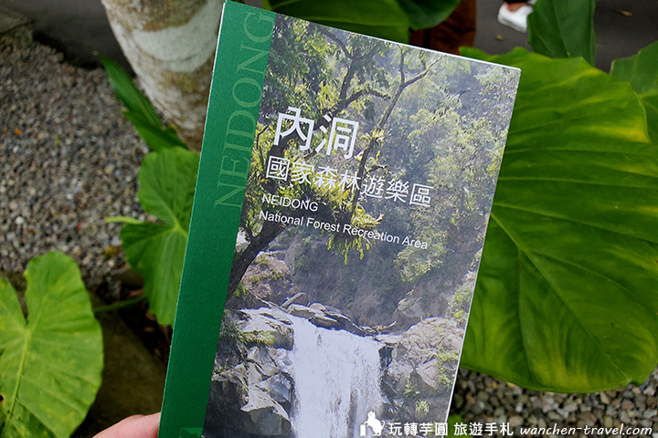 wulai-forest-stroll (9)