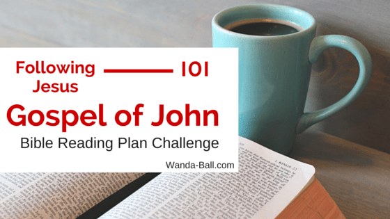 Following Jesus 101: Gospel of John - Bible Reading Plan Challenge