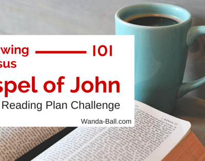 Following Jesus 101 – Gospel of John Bible Reading Plan Challenge Intro