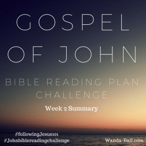 John Summary week 2