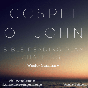 Gospel of John: Bible Reading Plan Challenge Week 3
