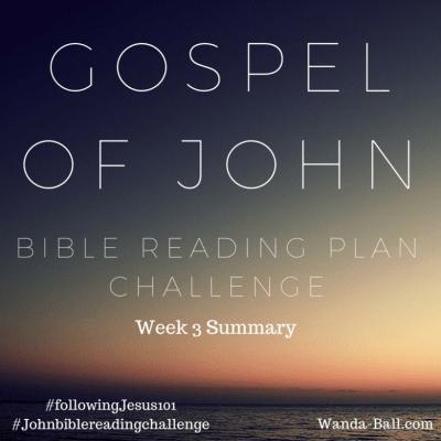 Gospel of John: Bible Reading Plan Challenge Week 3