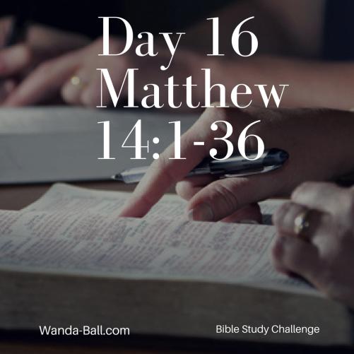 day-16-matthew-14-1-36