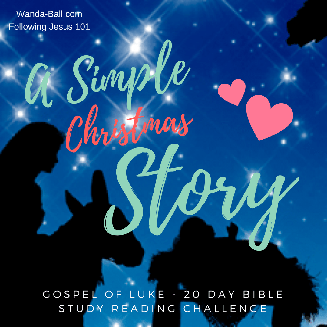 The Christmas Story Bible.A Simple Christmas Story Gospel Of Luke 20 Day Bible