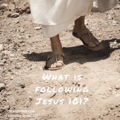 What is Following Jesus 101?