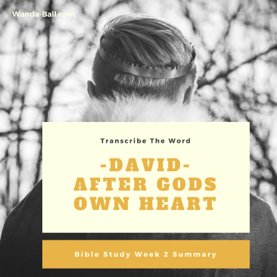 Transcribe The Word: David – After Gods Own Heart – Bible Study Week 2 Summary
