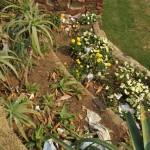 Sunken Garden, Durban, South Africa.