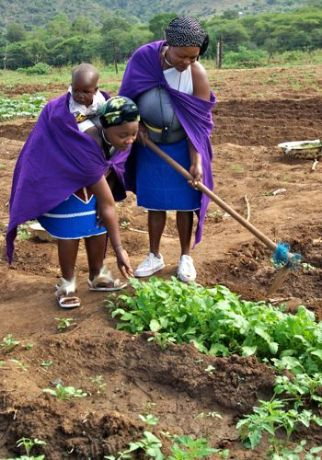 women at work in Msinga