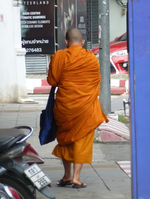 Monk sighting Chiangmai
