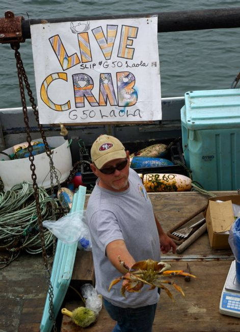 Fresh crab from the boats in Princeton by the Sea, California.
