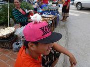 Rats! In Luang Prabang Laos.