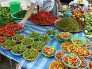Chillies for sale at the farmers market.