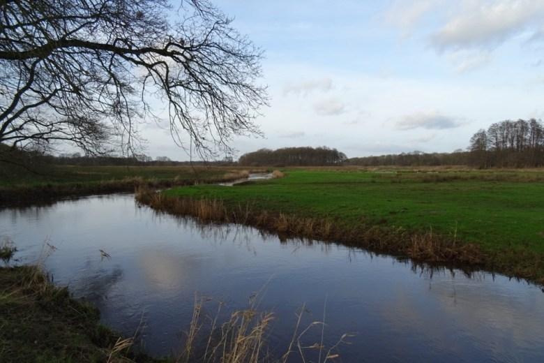 Natuurgebied Drentse Aa