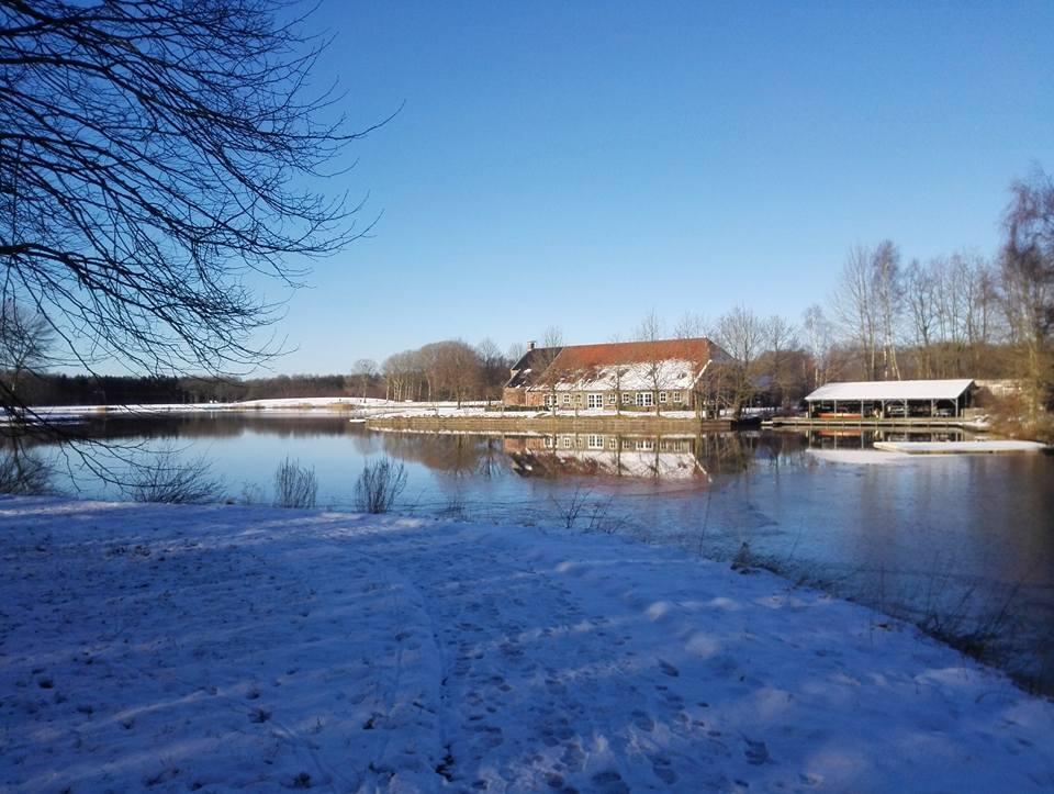 Borgerswoldhoeve Veendam (januari)