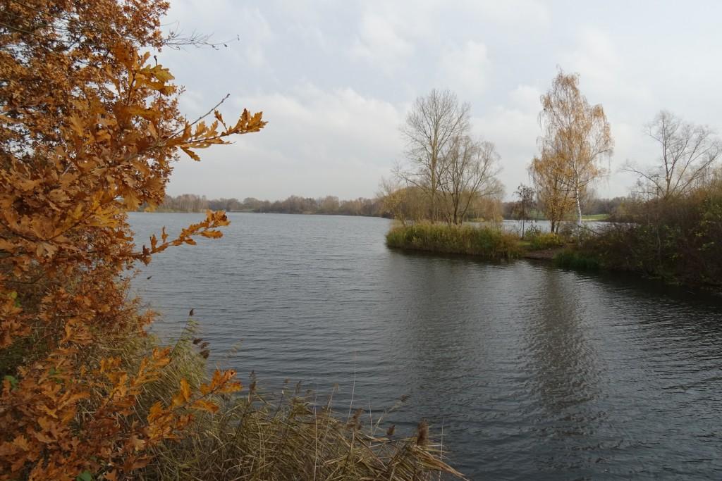 Fuldaue Park Kassel