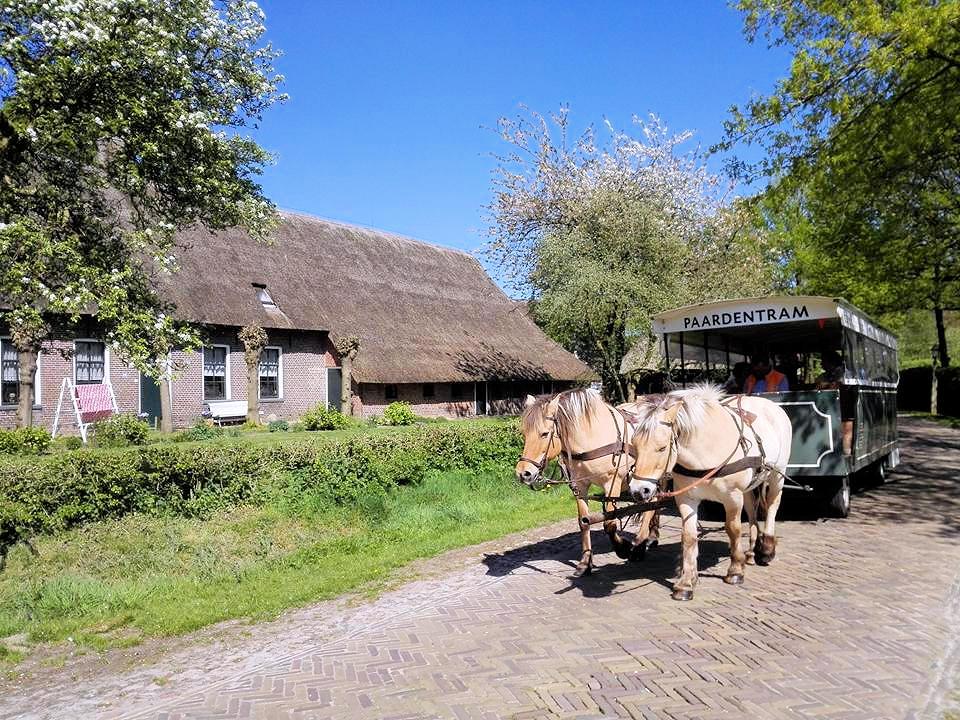 Paardentram Orvelte Drenthe