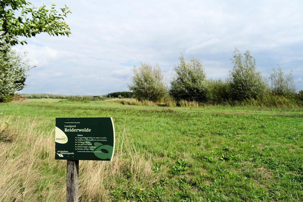 Natuurgebied Reiderwolde Groningen