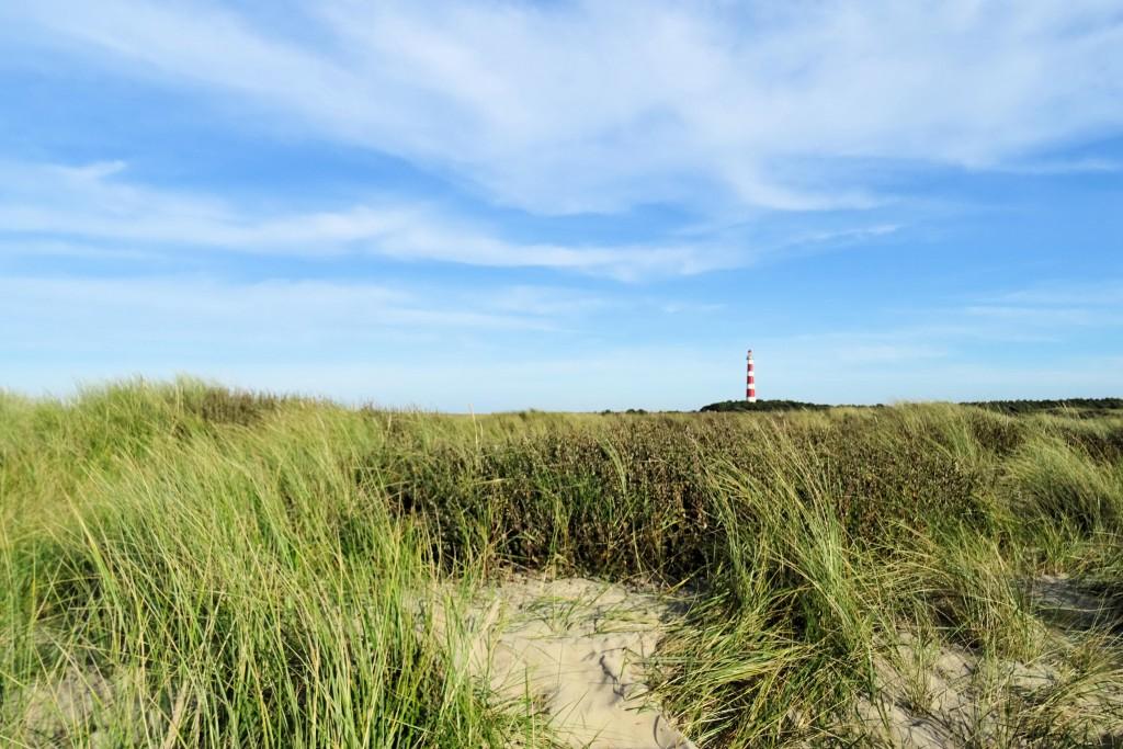 Ameland waddeneiland Nederland