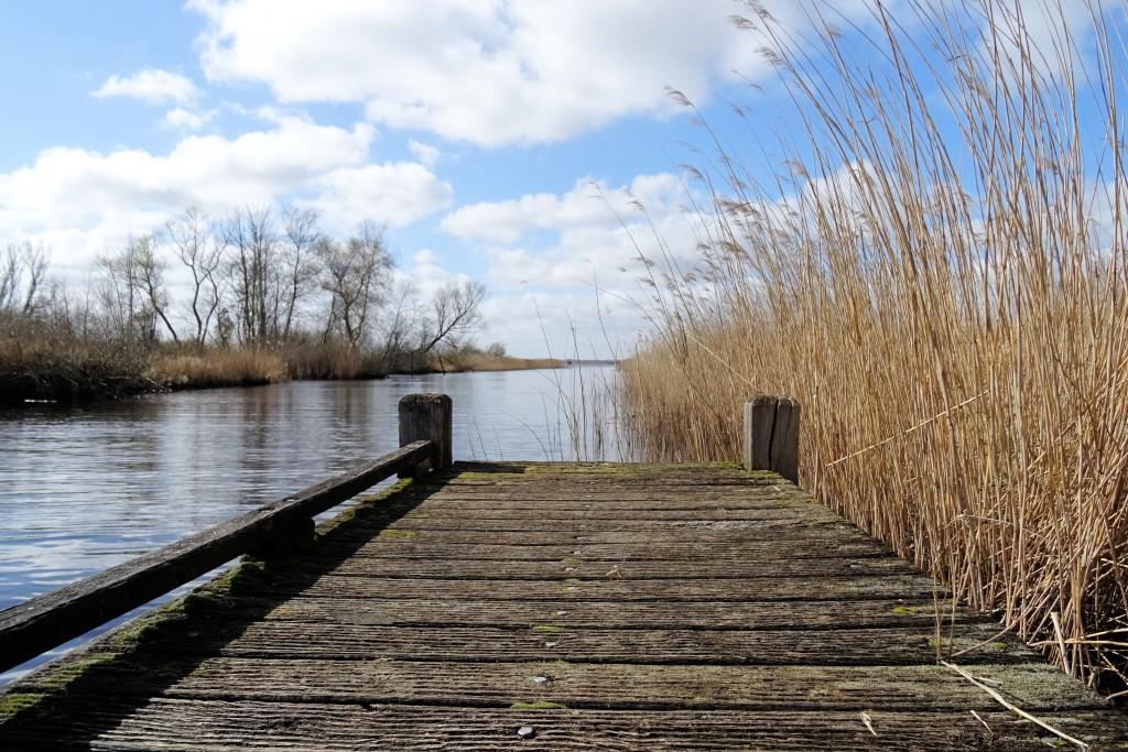 Natuurgebied Leinwijk Kropswolde wandelen maart