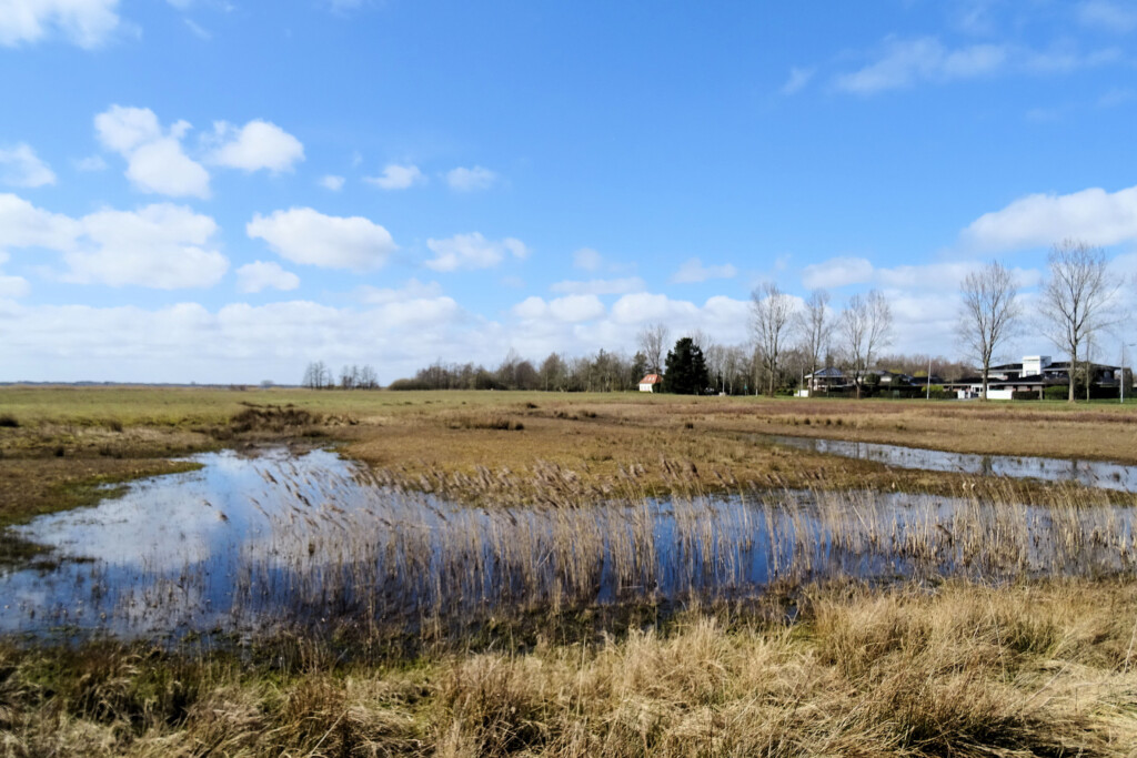 Natuurgebied Leinwijk Kropswolde Groningen
