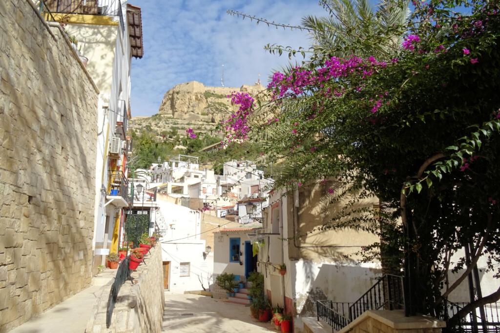 El Barrio de Sante Cruz Alicante