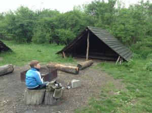 Legaal wildkamperen bij Campanula Horsterwold Flevoland