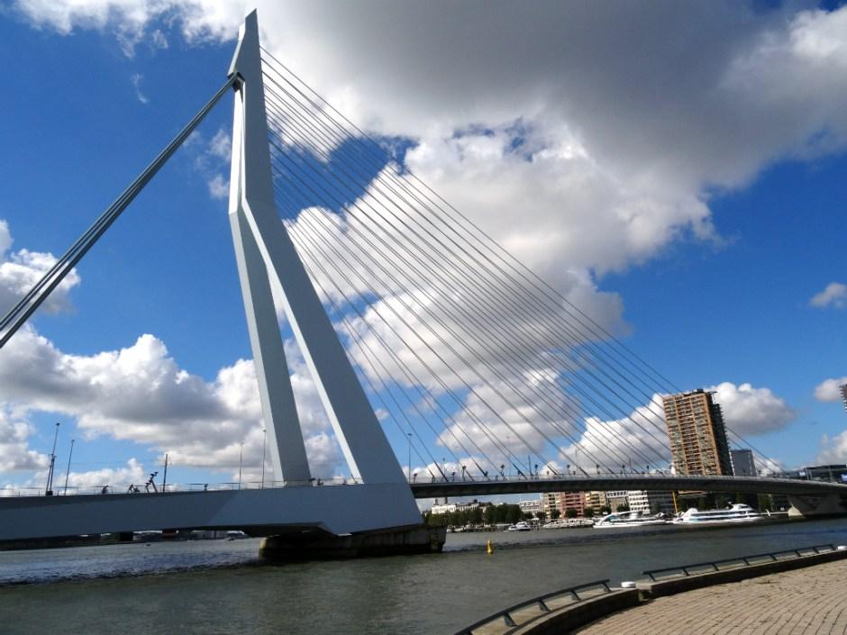 Erasmusbrug - Rotterdam Stadswandeling