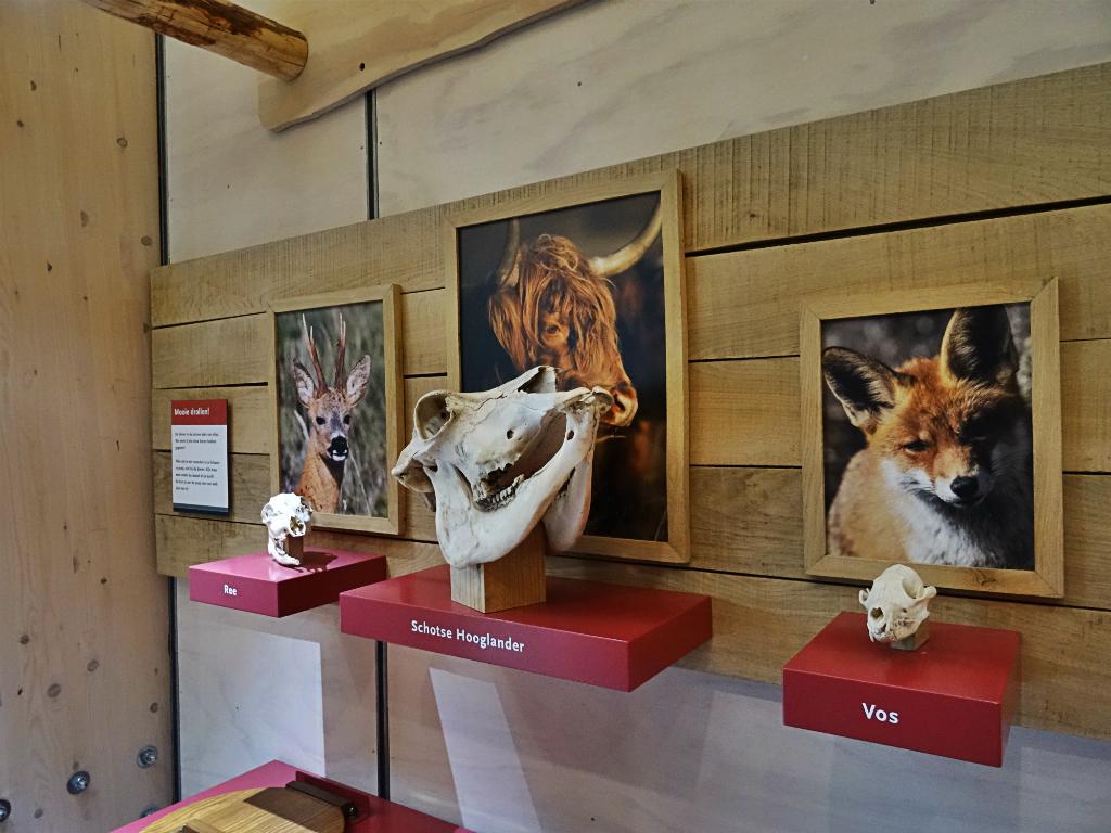 Bezoekerscentrum 2 - Kroegloper NP Zuid-Kennemerland