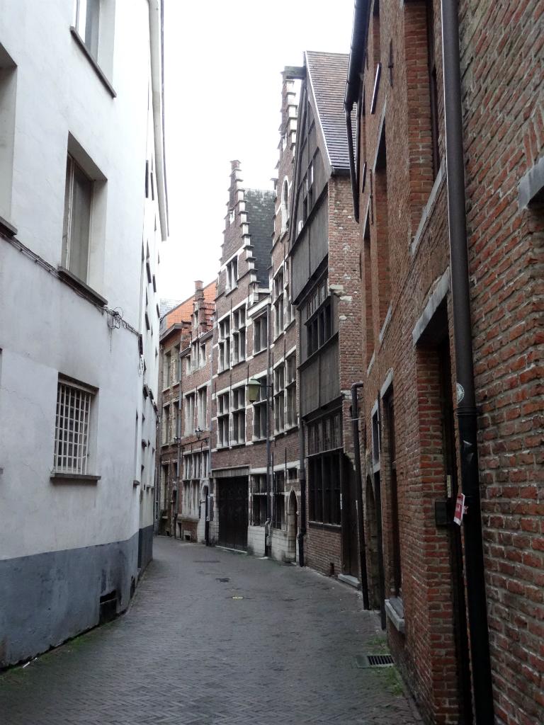 Stadswandeling Antwerpen Steeg