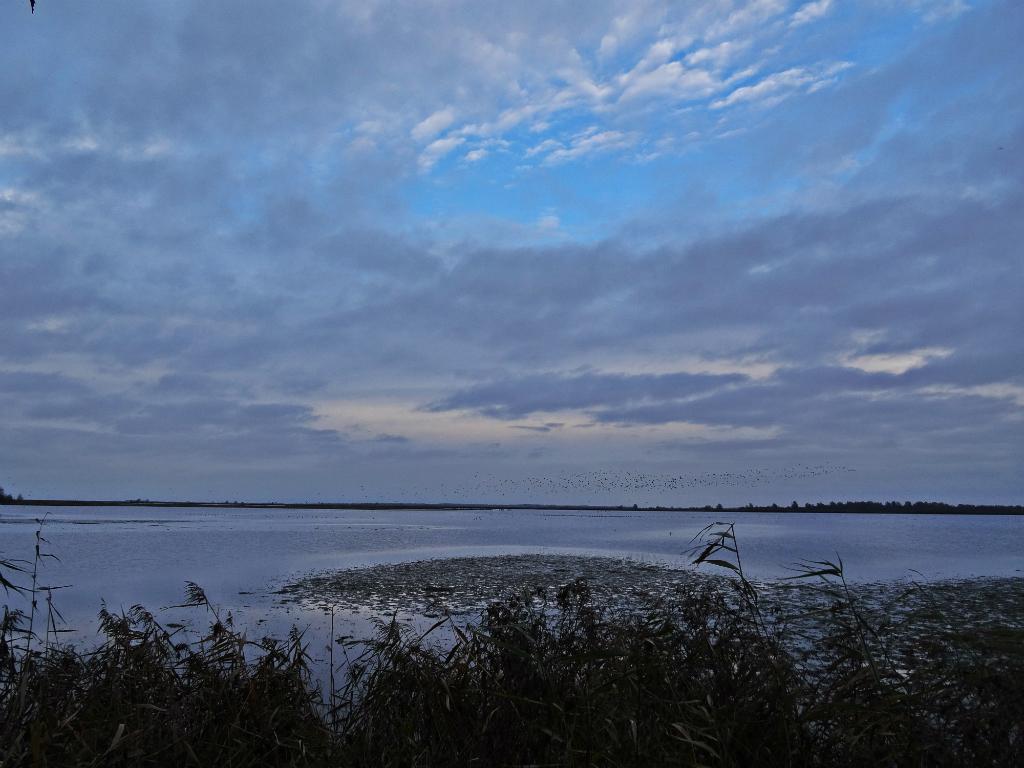Lauwersmeer 2 - historische wandeling lauwersmeer
