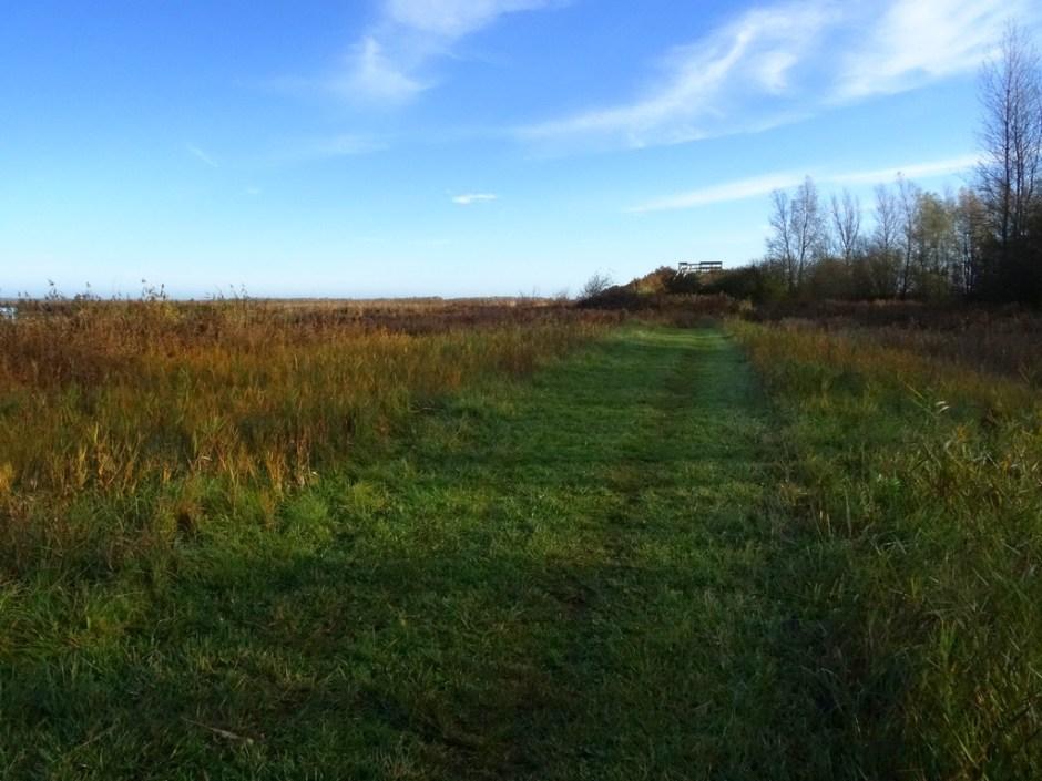 Uitzichtheuvel Vogelroute Lauwersmeer 1