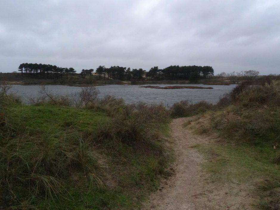 Winterwandeling NP Zuid-Kennemerland vogelmeer