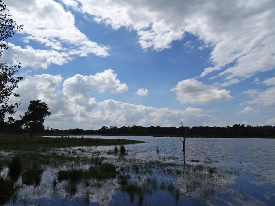 Wandelen rond Chaam: Van kerkpaden en een kapel