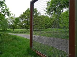 Wandeling Wolfheze: Kerkheuvel