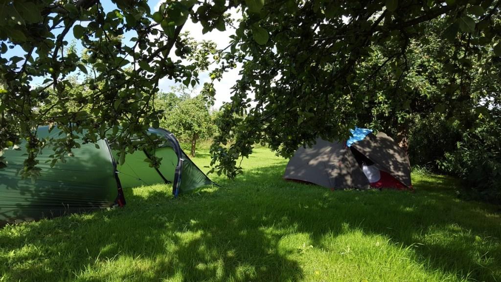 Camping In het fruit - tentplaats