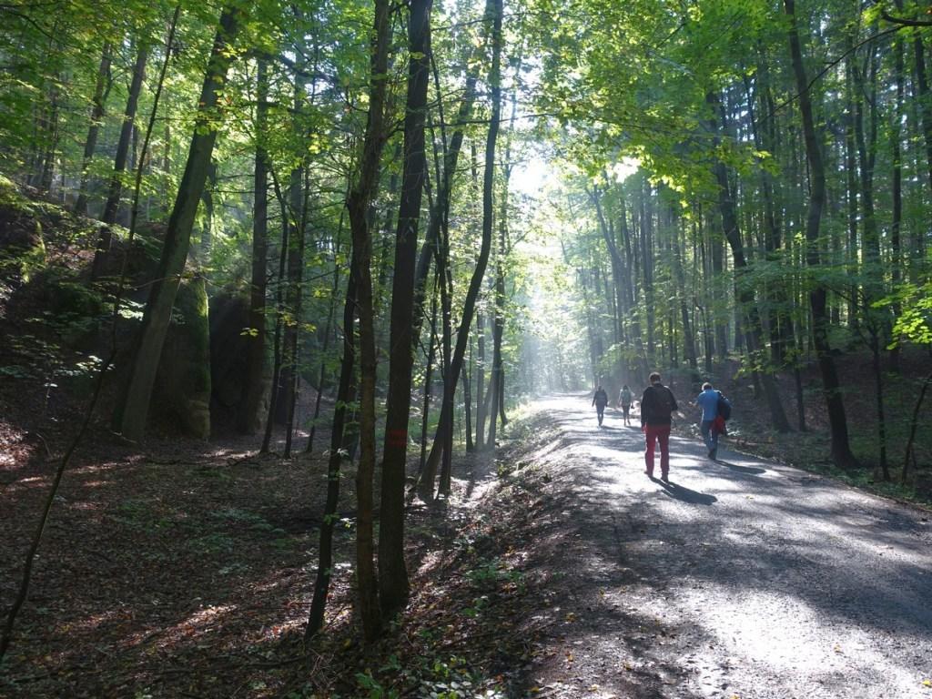 Wandelen the golden path