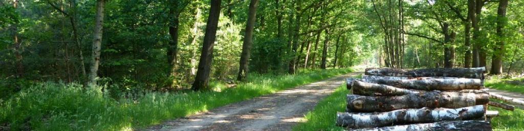 Wandelen in Overijssel