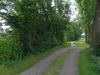 Noardlike Fryske Wâldenpad - mooie onverharde paden